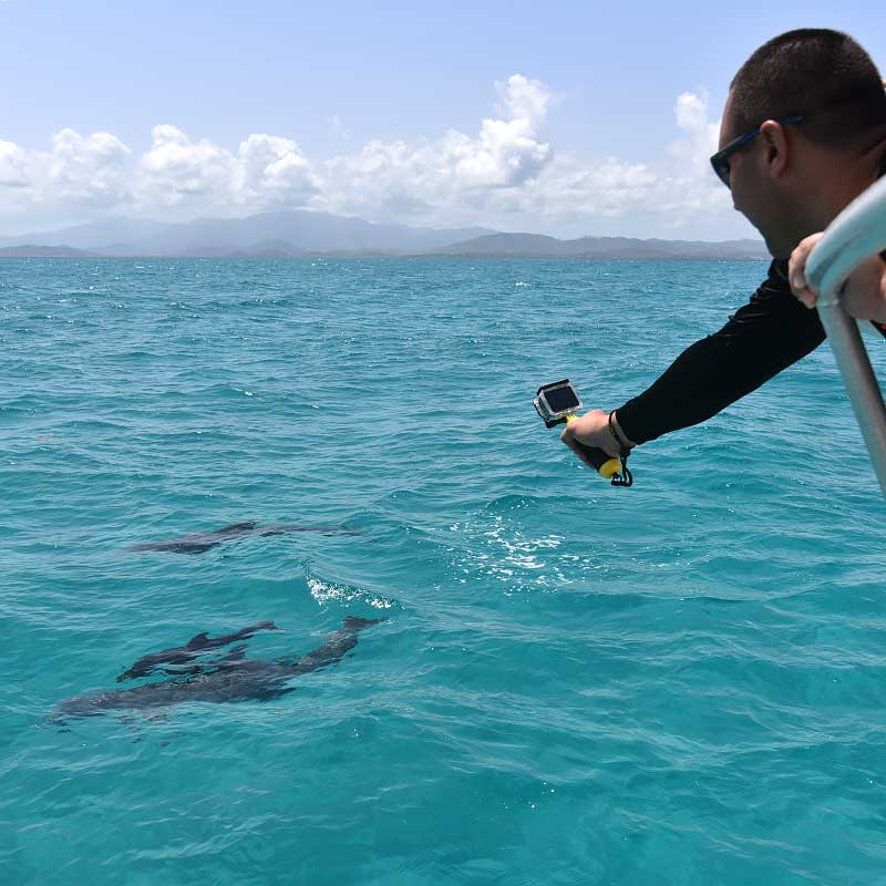 Snorkel Amp Cruise Charter Boat To Vieques Puerto Rico