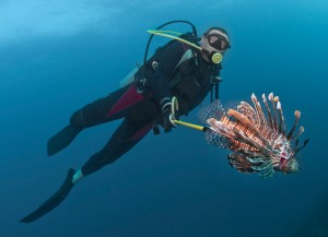 spearfishing-lionfish