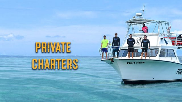 PRIVATE CHARTERS