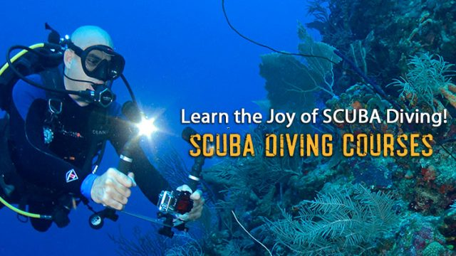 SCUBA DIVING COURSES IN PUERTO RICO